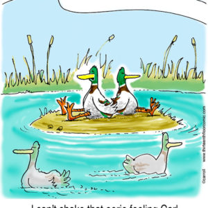 Sitting Ducks Gifts